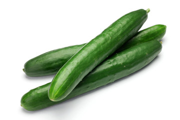 Long Dutch Cucumber