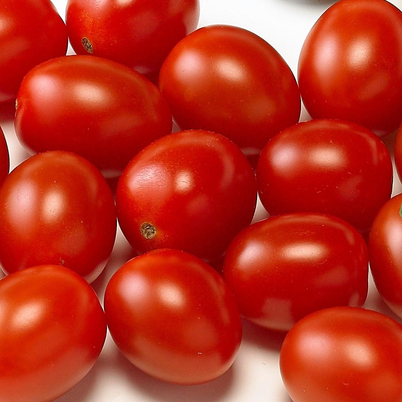 Snack tomato Dattored F1