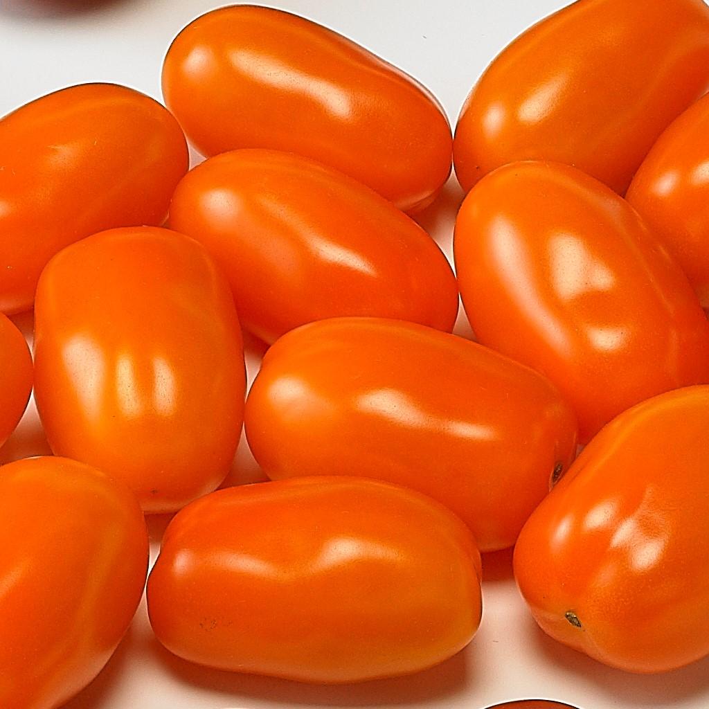 Snack Tomato Dattorange F1