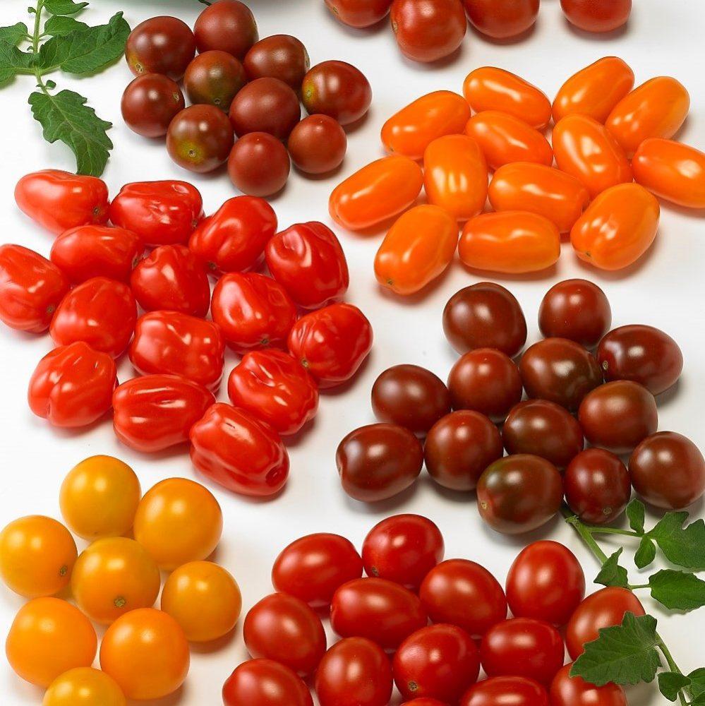 Snack Tomato